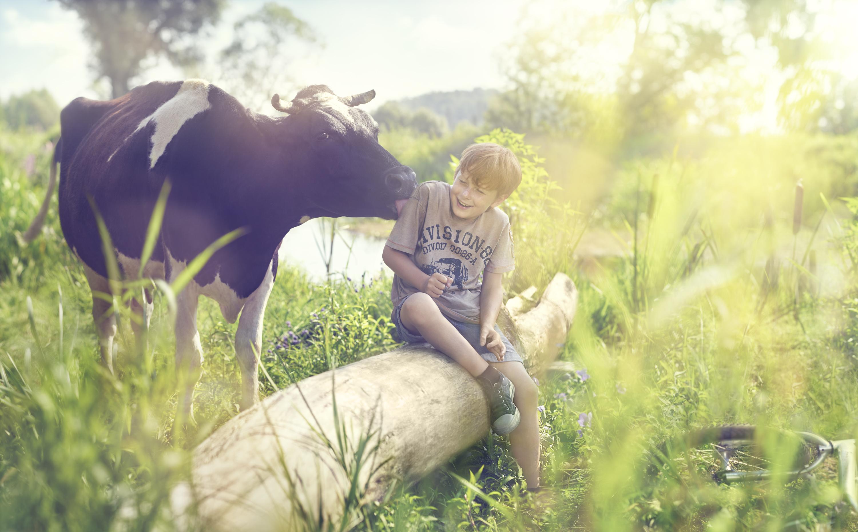 Serek-Turek-lizanie-krowy-179222-v19-RGB